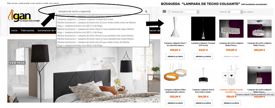 Guía de compra Igan 2