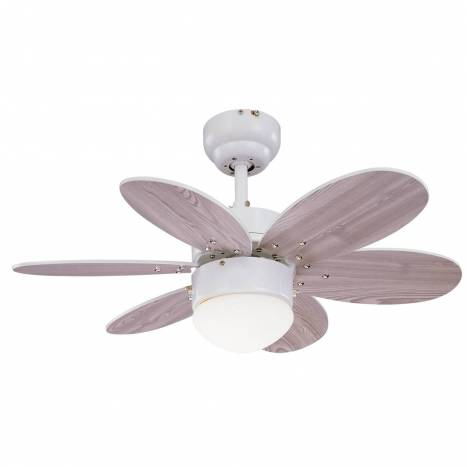 SULION Rainbow 1L ceiling fan