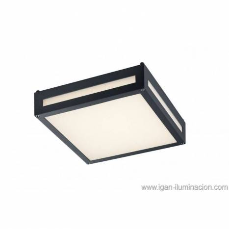 Trio Newa outdoor ceiling lamp LED 13w anthracite