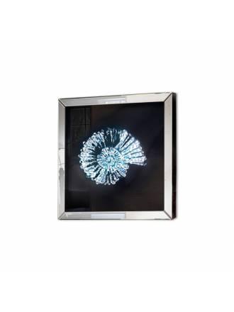 Cuadro espejo Fósil 60x60 biselado - Schuller