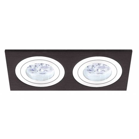 ROILUX A308 2 lights recessed light black