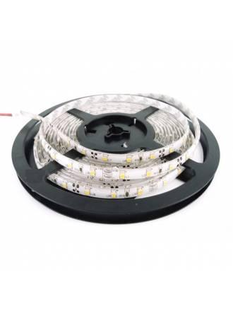 Tira LED 5mts 4.8w 60 LEDS/M 12VDC IP20 de Maslighting