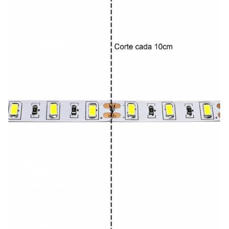 Tira LED 5mts 4.8w 60 LEDS/M 12VDC IP20 de Maslighting